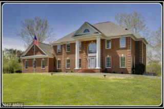 28 Winning Colors Road, Stafford, VA 22556 (#ST9957187) :: Pearson Smith Realty