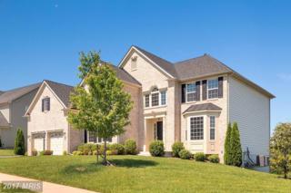 122 Coachman Circle, Stafford, VA 22554 (#ST9957203) :: Pearson Smith Realty