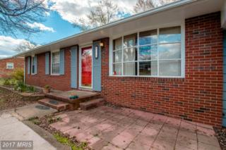 713 Payton Drive, Fredericksburg, VA 22405 (#ST9957469) :: Pearson Smith Realty