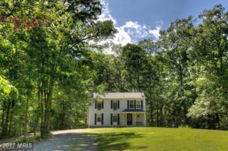 100 Meadows Road, Fredericksburg, VA 22406 (#ST9960687) :: Keller Williams Pat Hiban Real Estate Group