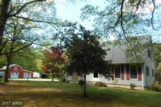 9411 Mount Zion Road, Laurel, DE 19956 (#SU9934609) :: Pearson Smith Realty