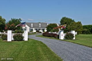 24545 New Post Road, Saint Michaels, MD 21663 (#TA9842643) :: Pearson Smith Realty