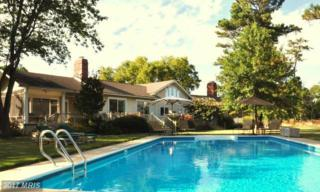 7121 Drum Point Road, Saint Michaels, MD 21663 (#TA9842860) :: Pearson Smith Realty