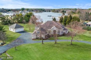 24823 Deepwater Point Drive, Saint Michaels, MD 21663 (#TA9844119) :: Pearson Smith Realty