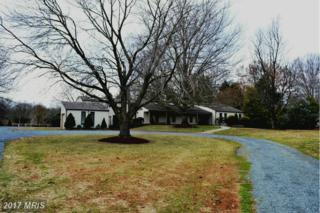 24691 Deepwater Point Drive, Saint Michaels, MD 21663 (#TA9863125) :: Pearson Smith Realty