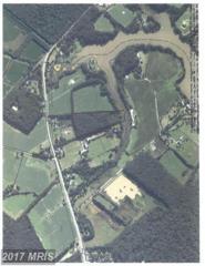 Tilghman Road, Mcdaniel, MD 21647 (#TA9865602) :: Pearson Smith Realty
