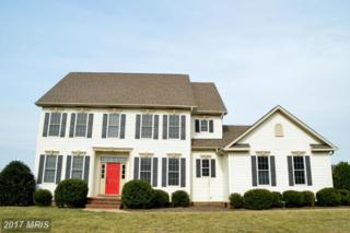 13557 Rustling Oaks Drive, Wye Mills, MD 21679 (#TA9869484) :: Pearson Smith Realty