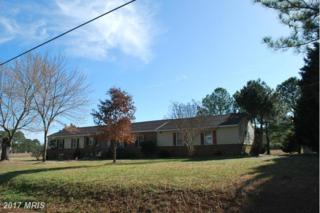22753 Pot Pie Road, Wittman, MD 21676 (#TA9870905) :: Pearson Smith Realty