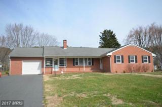 29416 Stoney Ridge Circle, Easton, MD 21601 (#TA9871286) :: Pearson Smith Realty