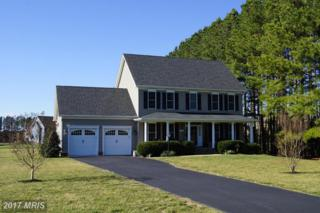 13482 Rustling Oaks Drive, Wye Mills, MD 21679 (#TA9877027) :: Pearson Smith Realty