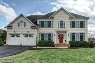 13473 Blackberry Lane, Wye Mills, MD 21679 (#TA9884402) :: Pearson Smith Realty