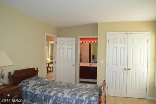 28596 Clubhouse Drive, Easton, MD 21601 (#TA9888533) :: LoCoMusings