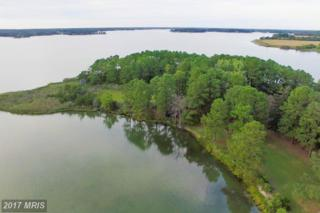 5252 LONG POINT FARM DR. LOT 3, Oxford, MD 21654 (#TA9894827) :: Pearson Smith Realty