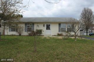 9244 Honeysuckle Drive, Easton, MD 21601 (#TA9900425) :: Pearson Smith Realty
