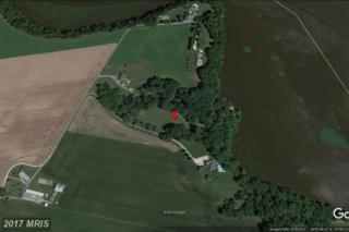 32777 Bluff Point Road, Cordova, MD 21625 (#TA9911972) :: Pearson Smith Realty