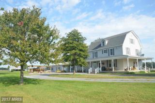10922 Chapel Road, Cordova, MD 21625 (#TA9925862) :: Pearson Smith Realty
