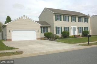 29738 Standish Street, Easton, MD 21601 (#TA9932137) :: Pearson Smith Realty