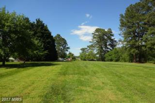 Deep Harbour Farm Road, Sherwood, MD 21665 (#TA9935615) :: Pearson Smith Realty