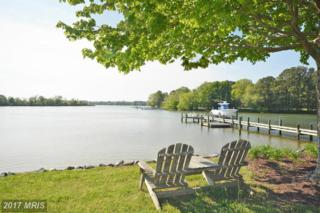 4000 Chamberlaine Cove Road, Trappe, MD 21673 (#TA9942492) :: Pearson Smith Realty
