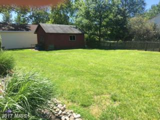 102 Willows Avenue, Oxford, MD 21654 (#TA9942547) :: Pearson Smith Realty