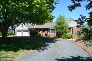 904 Riverview Terrace, Saint Michaels, MD 21663 (#TA9943806) :: Pearson Smith Realty