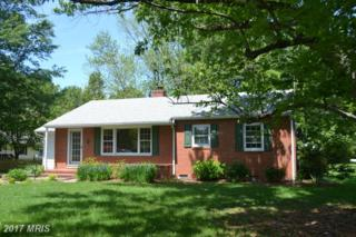 313 Cleveland Road, Saint Michaels, MD 21663 (#TA9946209) :: Pearson Smith Realty