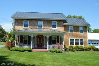 22582 Pot Pie Road, Wittman, MD 21676 (#TA9946854) :: Pearson Smith Realty