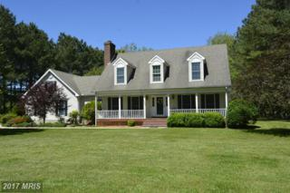 8565 Northbend Road, Easton, MD 21601 (#TA9949622) :: Pearson Smith Realty