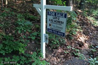 Trego Mountain Road, Keedysville, MD 21756 (#WA8624176) :: Pearson Smith Realty