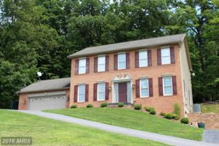 3709 Trego Mountain Road, Keedysville, MD 21756 (#WA9717835) :: Pearson Smith Realty
