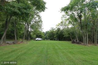 7710 River Rock Court, Williamsport, MD 21795 (#WA9781204) :: Pearson Smith Realty