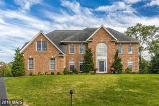 18823 Fountain Terrace, Hagerstown, MD 21742 (#WA9821883) :: Pearson Smith Realty