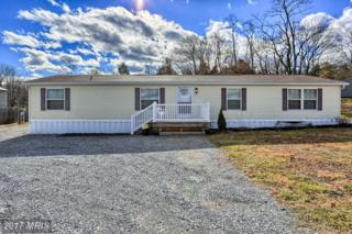 14823 National Pike, Clear Spring, MD 21722 (#WA9835620) :: LoCoMusings