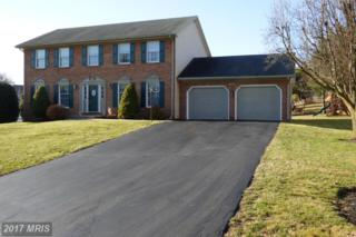13120 Gentry Drive, Hagerstown, MD 21742 (#WA9847959) :: LoCoMusings