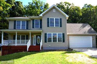 2717 Hawks Hill Lane, Keedysville, MD 21756 (#WA9859785) :: Pearson Smith Realty