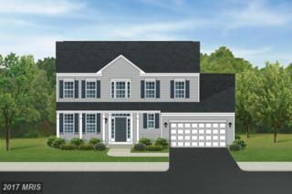 Morning Walk Drive, Hagerstown, MD 21740 (#WA9859919) :: Pearson Smith Realty