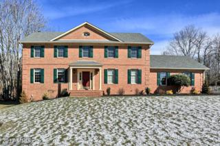 11310 Eastwood Drive, Hagerstown, MD 21742 (#WA9861809) :: Pearson Smith Realty