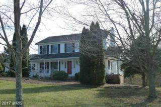 12 Mallard Lane, Keedysville, MD 21756 (#WA9862791) :: Pearson Smith Realty