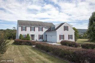 12113 Itnyre Road, Smithsburg, MD 21783 (#WA9868001) :: Pearson Smith Realty