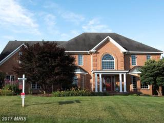 20331 Ayoub Lane, Hagerstown, MD 21742 (#WA9870122) :: Pearson Smith Realty