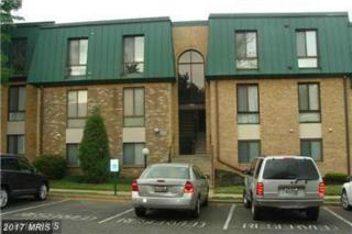 1002 Brinker Drive #301, Hagerstown, MD 21740 (#WA9871021) :: Pearson Smith Realty