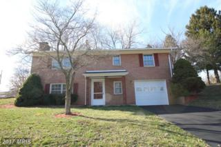 13822 Northvalley Drive, Hagerstown, MD 21742 (#WA9871853) :: Pearson Smith Realty