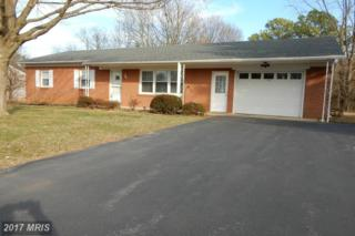 11609 Peacock Trail, Hagerstown, MD 21742 (#WA9872195) :: LoCoMusings