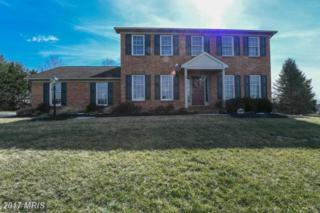 21209 Serenity Drive, Hagerstown, MD 21742 (#WA9887498) :: Pearson Smith Realty