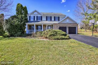 19715 Portsmouth Drive, Hagerstown, MD 21742 (#WA9888283) :: LoCoMusings