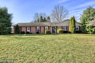 16635 Mosby Drive, Williamsport, MD 21795 (#WA9893348) :: Pearson Smith Realty