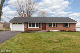 12058 Little Antietam Road, Smithsburg, MD 21783 (#WA9893477) :: Pearson Smith Realty