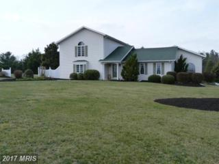 13626 Broadfording Church Road, Hagerstown, MD 21740 (#WA9894010) :: Pearson Smith Realty