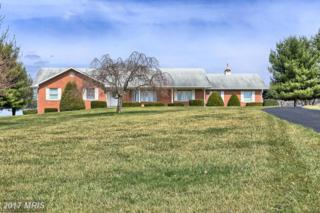 5420 Hollow Tree Lane, Keedysville, MD 21756 (#WA9901021) :: Pearson Smith Realty