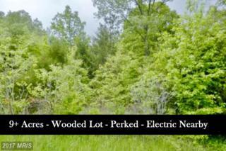 Clevelandtown Road, Boonsboro, MD 21713 (#WA9908863) :: Pearson Smith Realty